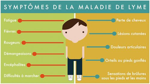 Les symptomes de la maladie de lyme